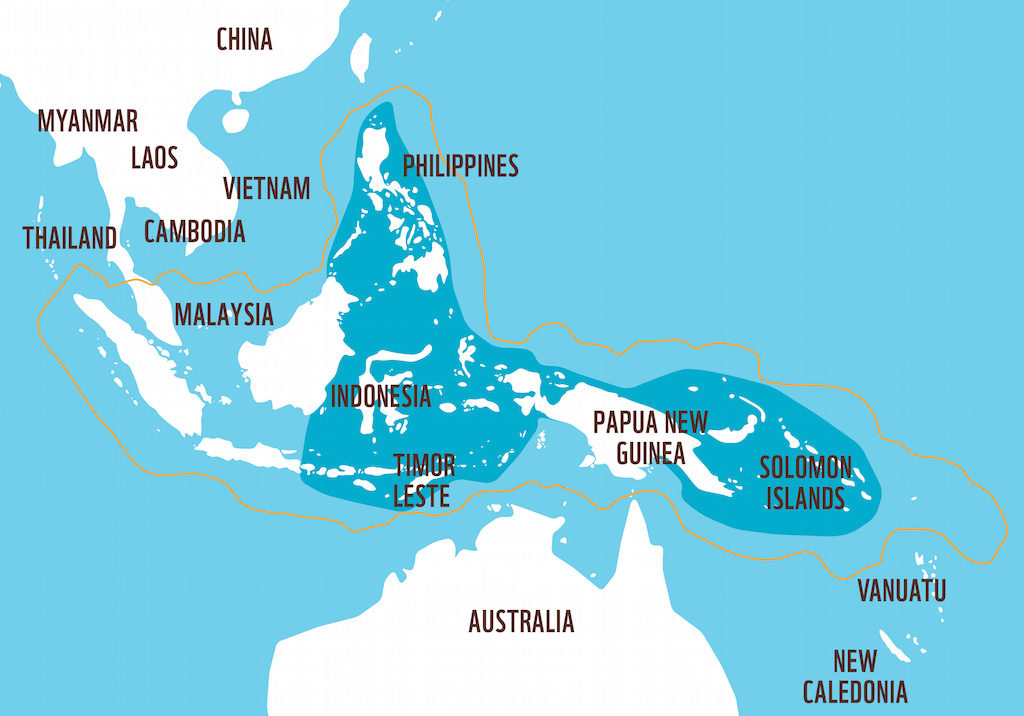 http://wwf.panda.org/what_we_do/where_we_work/coraltriangle/coraltrianglefacts/