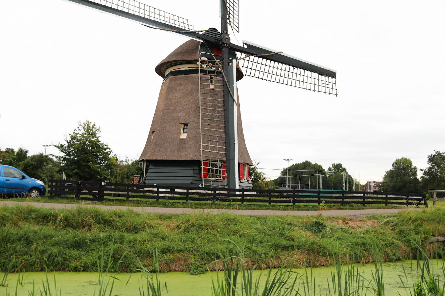 Windmills in Edam